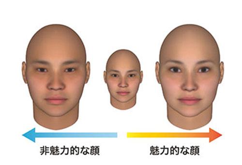 顔の魅力 | 早稲田大学 基幹理工学部・研究科